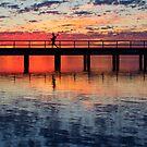 The Crabber - Leschenault Estuary - Western Australia by Chris Paddick