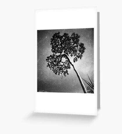 perspective, anlong veng, cambodia Greeting Card
