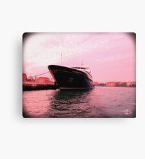 Cruise Metal Print