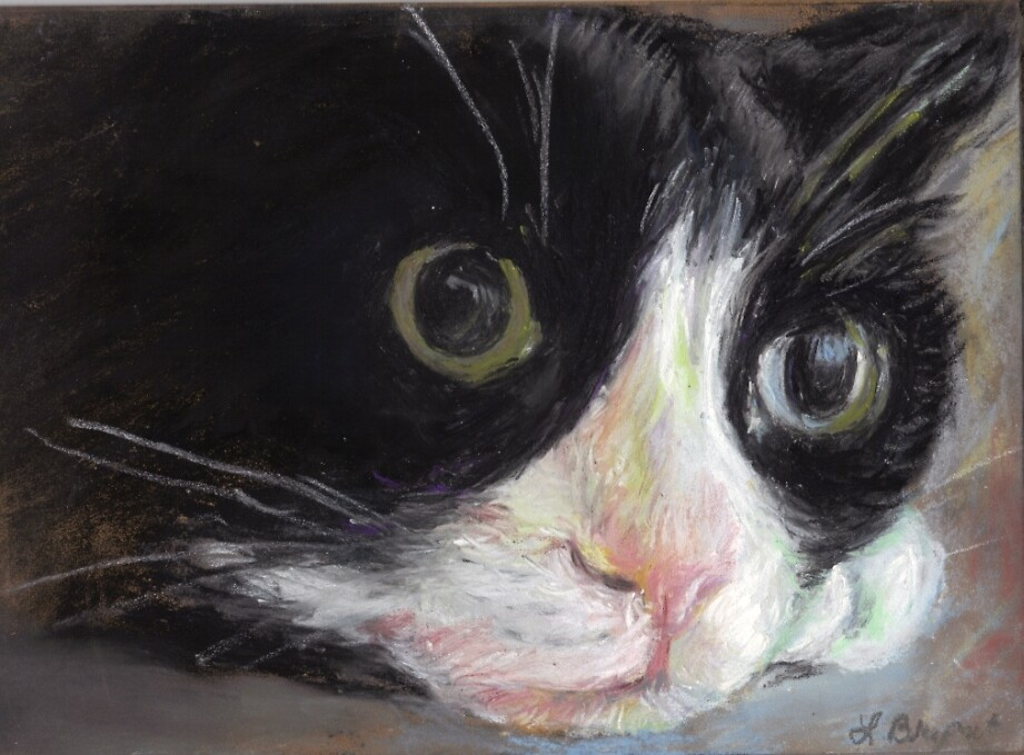 Nutter Butter Tuxedo Cat by Linda Bryant