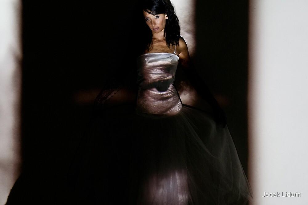 portrait of woman 2/ projection by Jacek Lidwin