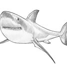 Great White Shark II by MadliArt