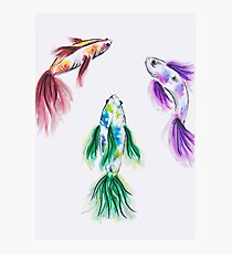 Dragon Koi Fish | Chinese Brush Painting Red Green Purple Photographic Print