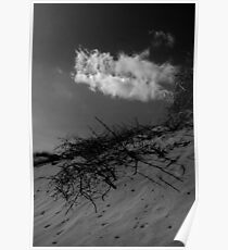 Clouds and Sticks Murlough Poster