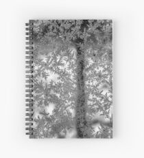 Ice flowers Spiral Notebook