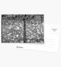 Ice flowers Postcards