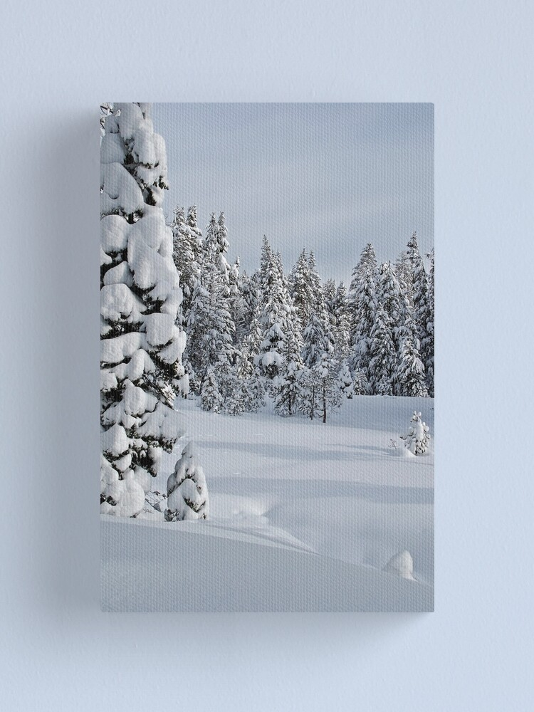 Alternate view of Serene Snow Scene Canvas Print