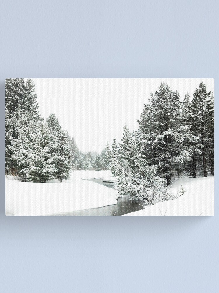 Alternate view of Upper Truckee River Surrounded by Snow Canvas Print