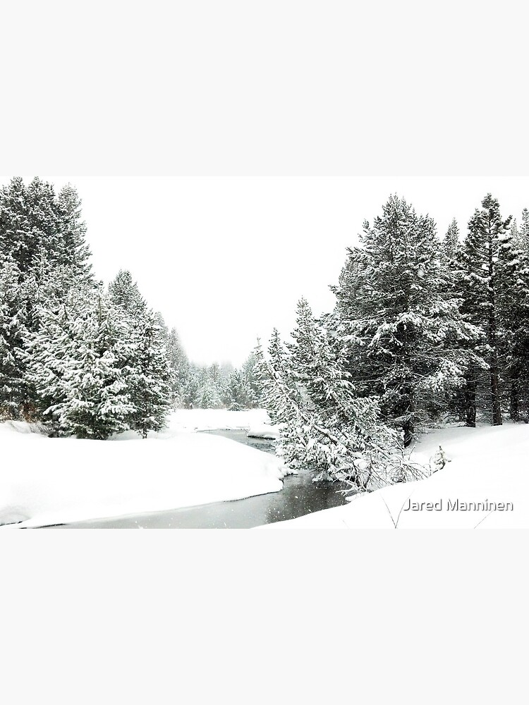 Upper Truckee River Surrounded by Snow by JaredManninen