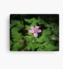 Pink Wildflowers Leinwanddruck