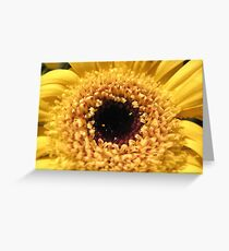 The Spring is here! Greeting Card