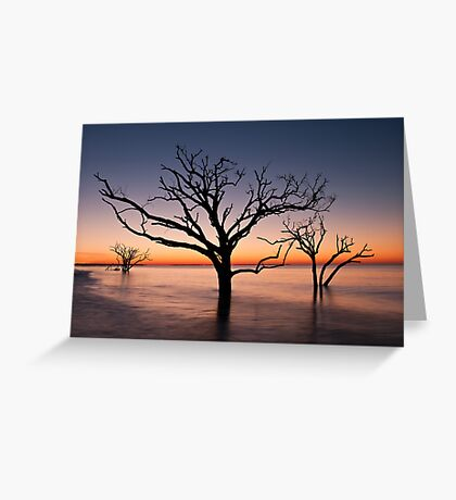 Bone Yard at Dawn Greeting Card