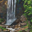 Queen Mary Falls by CaDra