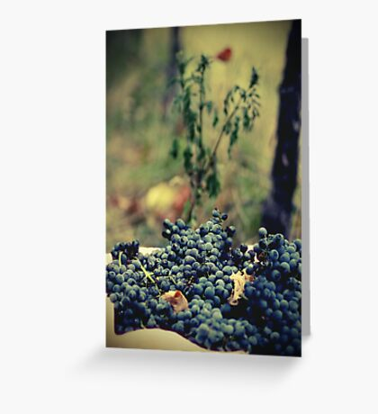 Ready for Wine Greeting Card