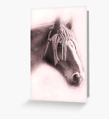 Beautiful Equine Greeting Card