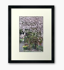 Spring in Crown Hill Framed Print
