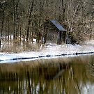 Spring Reflection - Wakefield Quebec by Debbie Pinard