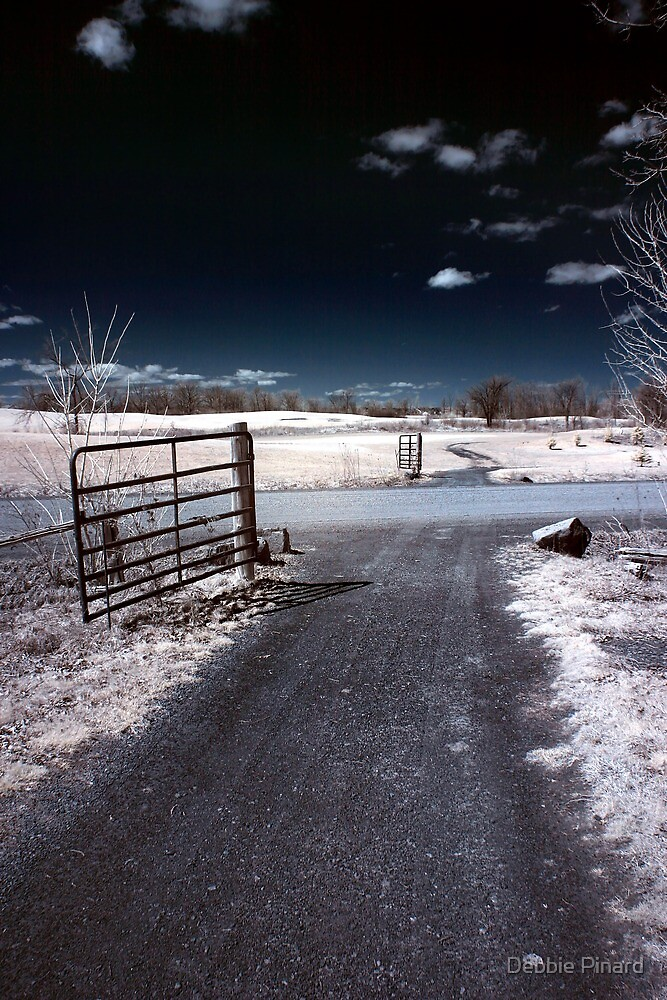 Gate to the Golf Course - The Marshes, Kanata by Debbie Pinard