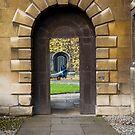 Gateway to Narnia by Robert Ellis