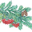 Pine Needles and Berries by Annie Mason