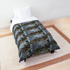 Aplysia Kurodai in Korea Comforter