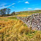 Grassington moorland by Shaun Whiteman