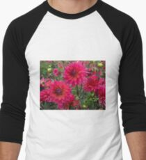 Dahlia Gardens in Canby, Oregon T-Shirt