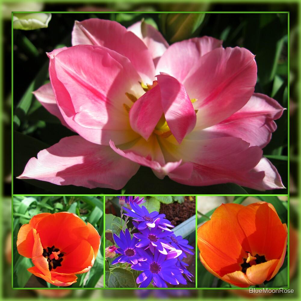 Dreamy Tulips Collage in Mirrored Frame von BlueMoonRose