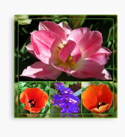 Dreamy Tulips Collage in Mirrored Frame Leinwanddruck