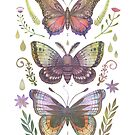 Butterflies and Moths Tab.I by Vlad Stankovic
