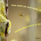 Sweeter than honey - Psalm 119:103 by Robin Clifton