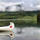 Maple Leaf Canoe Reflection by Teresa Zieba