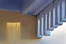 Shining Through by Leon Heyns
