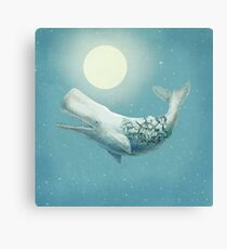 Far and Wide (night option) Canvas Print
