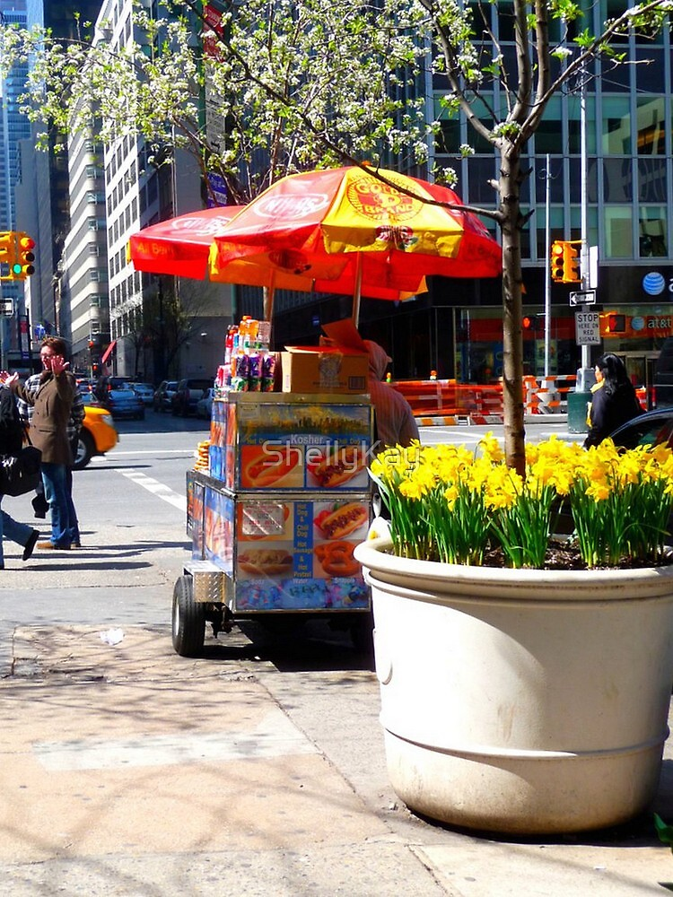 Spring on Park Ave. by ShellyKay