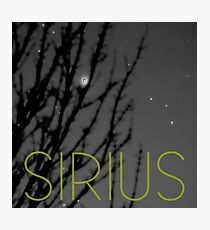 Sirius Photographic Print
