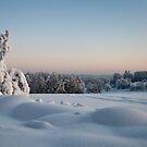 Winter Landscape in Finland by Cocktus