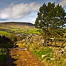 The old farmers track to Pendle Hill by Shaun Whiteman