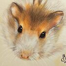 Bubba the Hamster by DrawingMom