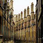 The Chimneys down Trinity Lane by artfulvistas