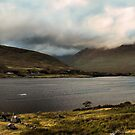 killary fjord, galway by Michelle McMahon
