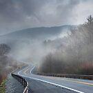 Winding Into the Mist by Lori Deiter