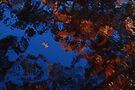 Autumn Blues Dream by Steve Borichevsky