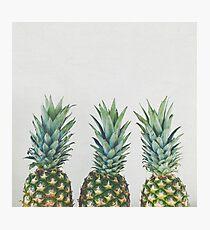 Pineapple Trio Photographic Print