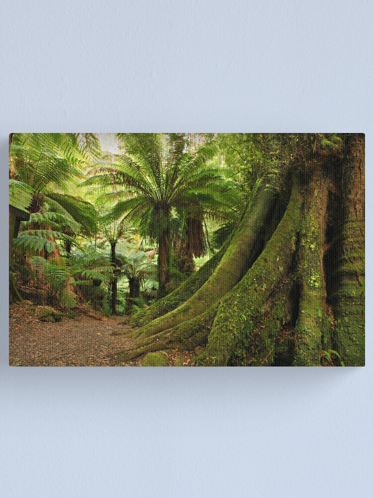 Alternate view of Forest Track Canvas Print