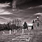 Cullenswood, Tasmania, Australia by Matthew Stewart