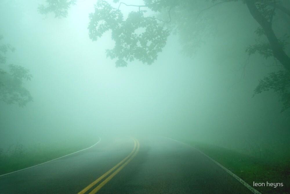 Driving through Fog by Leon Heyns