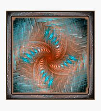 Gnarl Spiral Photographic Print