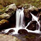Sages Ravine by Esherpah