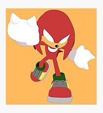 Knuckles the Echidna Photographic Print
